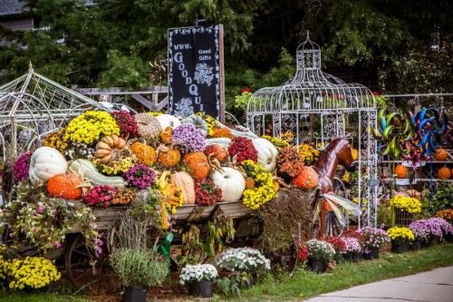 Get Festive This Fall in Cedar Rapids
